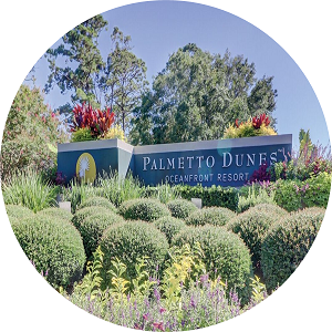 Palmetto Dunes Homes For Sale
