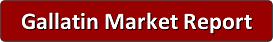 Gallatin TN Market Report