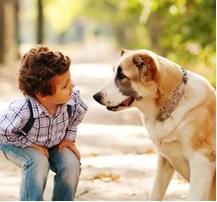 Young Boy an d Dog