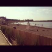 Saxony Beach is the site of Sunrise Yoga on the Beach