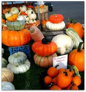 Fishers Farmers Market pumpkins