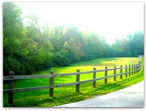 Cool Creek Park, Carmel Indiana