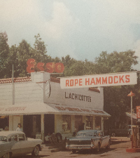 The History of the Hammock Shops /The Legacy of the Lachicottes