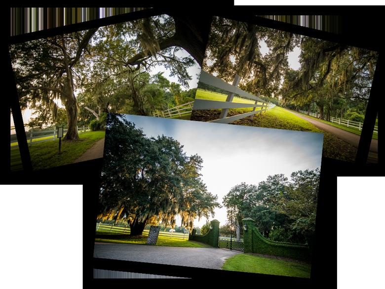 pawleys island historic plantations