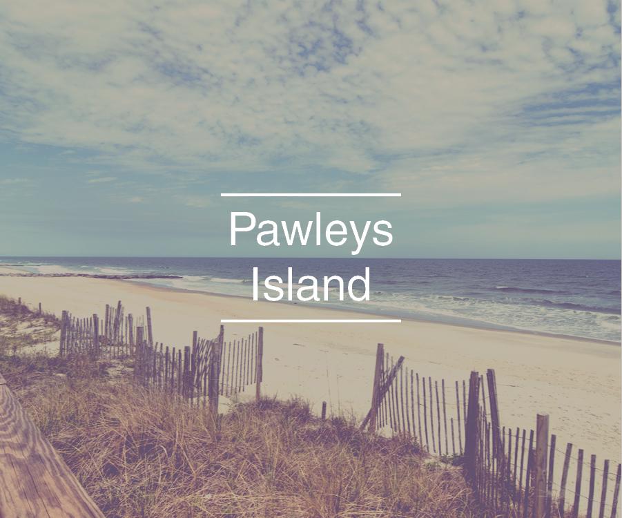 pawleys island area real estate
