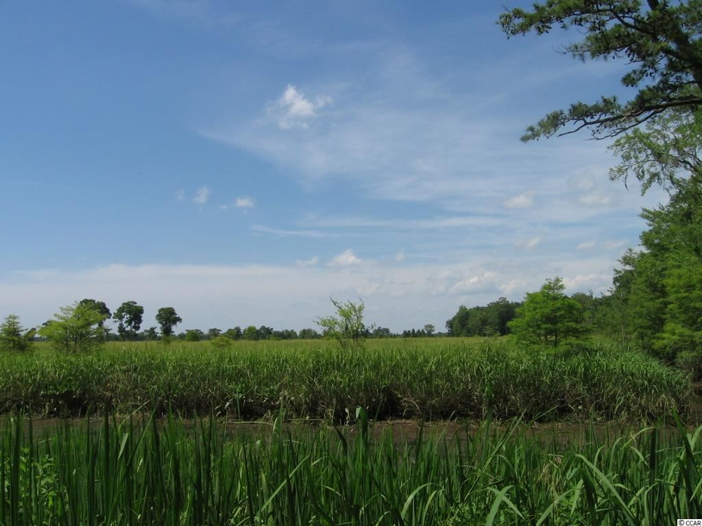 ricefields plantation pawleys island