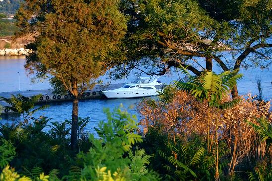 Admirals Cove Marina