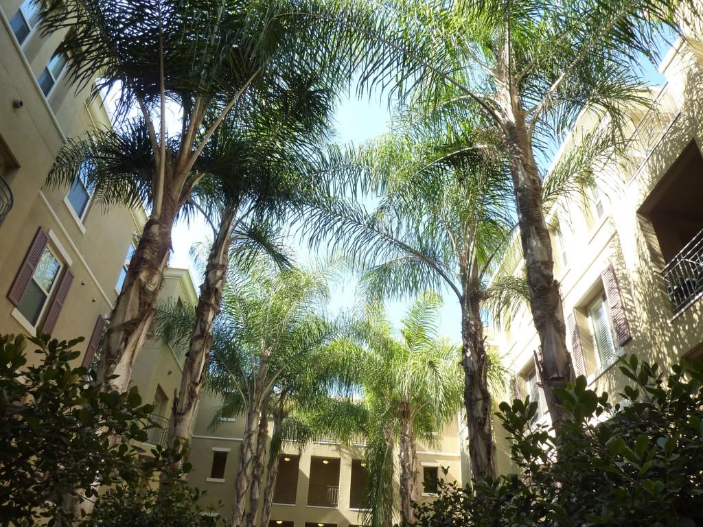 Courtyard Quattro Blu - Pasadena condos for sale