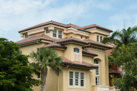 Estero Real Estate for Sale