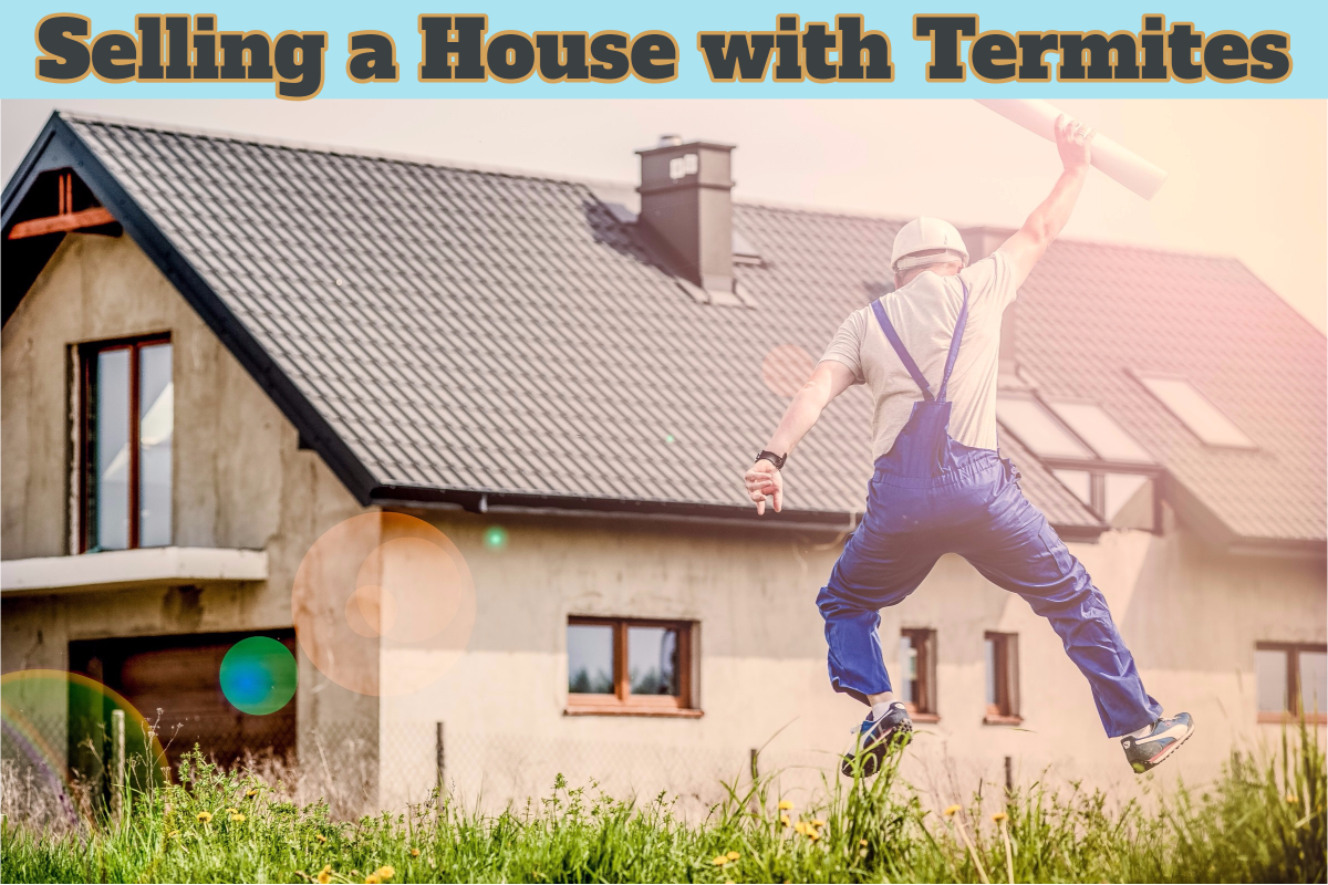 How to sell a termite damaged home