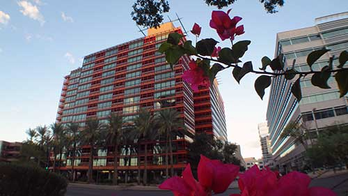 Highrise condos for sale in Phoenix Biltmore