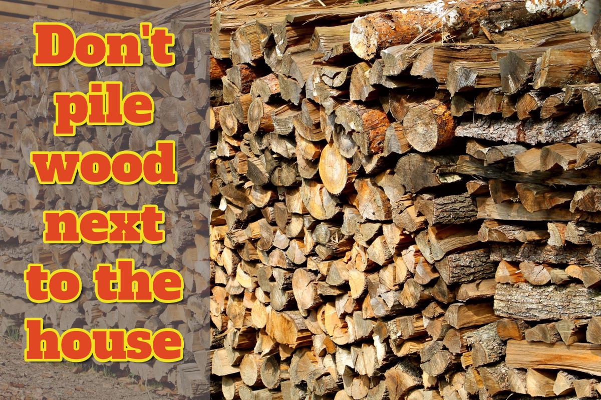 Avoiding termites