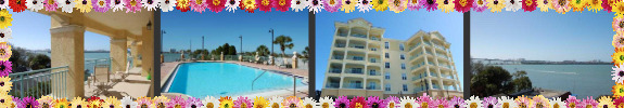 Bayview Condos Clearwater