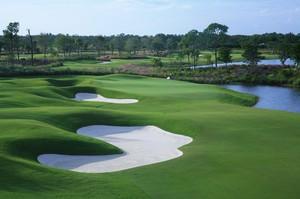 Estero golfing