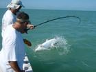 Fishing for tarpon Boca Grande Pass