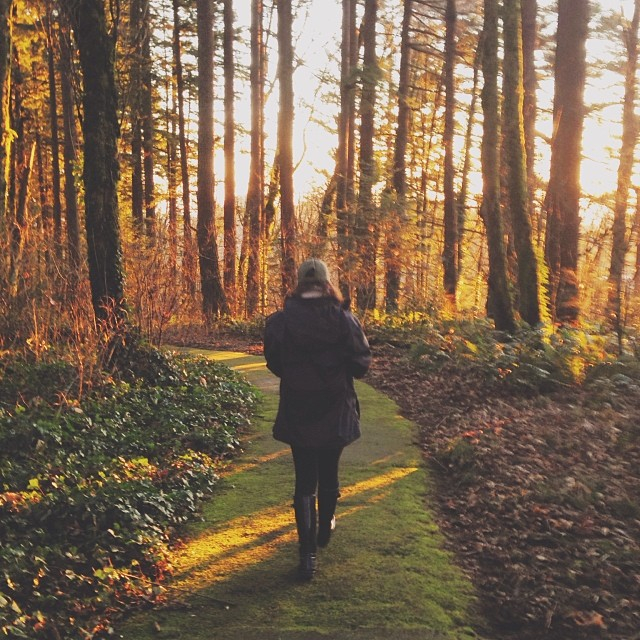The Best Walking & Jogging Trails in Portland