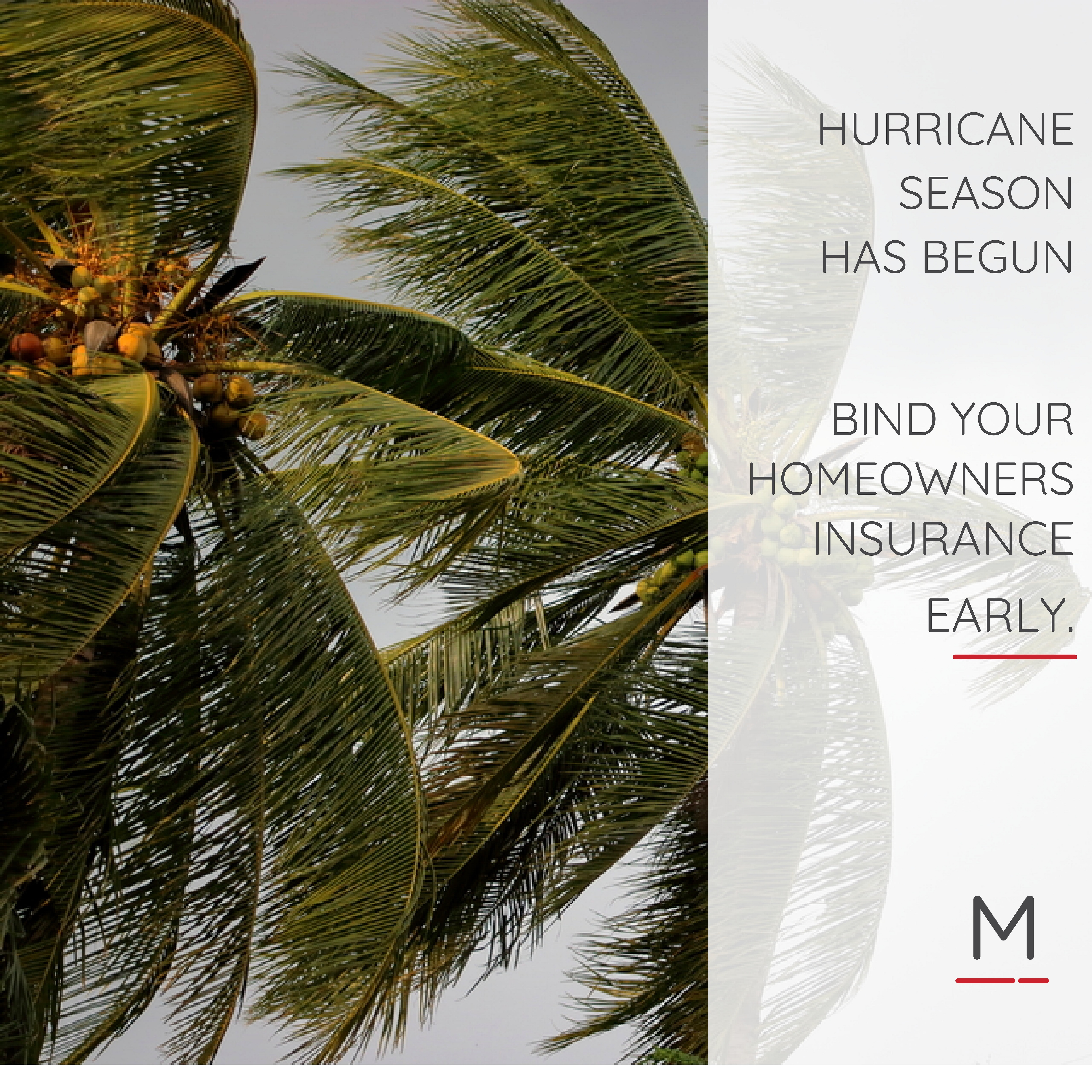 Hurricane Season Mainframe Real Estate