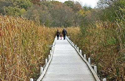 trail in cushing memorial park
