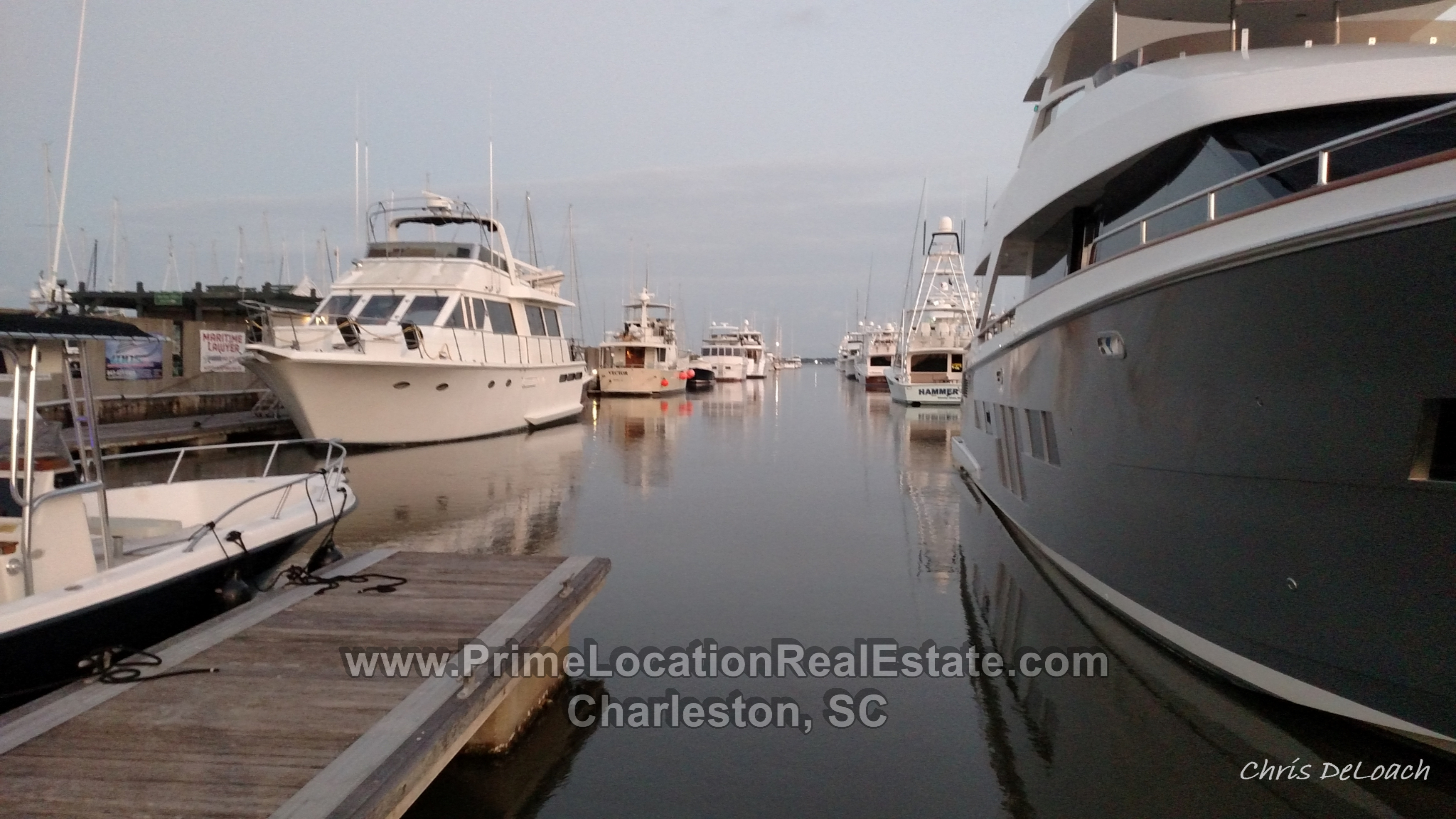 charleston city marina dock space