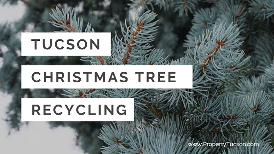 Since you can't just toss your old Christmas trees to the curb for regular trash pickup, bring them to one of the Tucson Christmas Tree Recycling locations to be turned into wood chips for the public to use in their personal gardens.