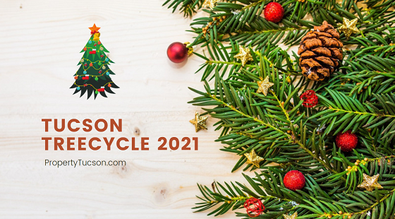 Now that Christmas is over, it is time to take down the tree. But where can you dispose of it? Tucson TreeCycle 2021 to the rescue!