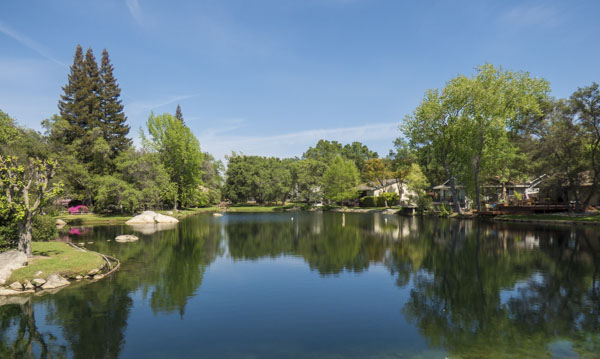 Pond in Hidden Lakes, Granite Bay
