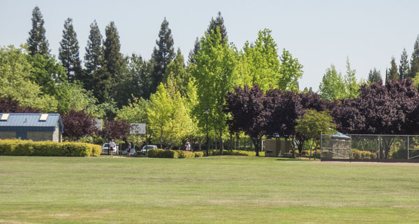 Hillsborough Park in Granite Bay