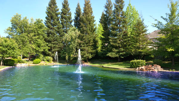 Pond in Wexford Granite Bay