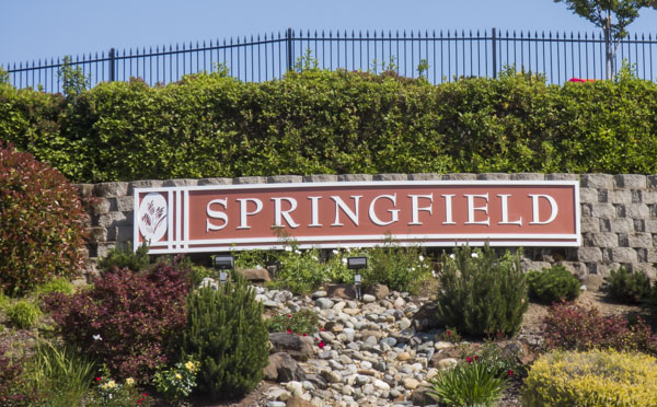 Homes for Sale in Springfield at Whitney Oaks