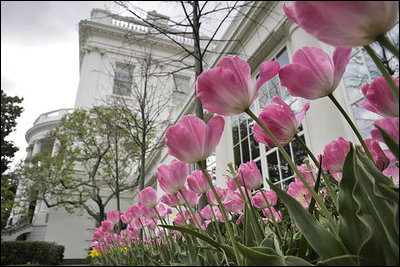 Why spring is a great time to list your home with pyxis realty mightylinksfo