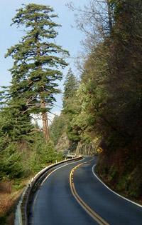 Scenic Chuckanut Drive