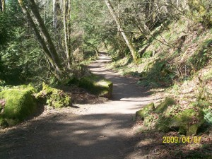 Hiking trail to Squires Lake