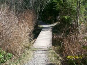 Bridge over marsh