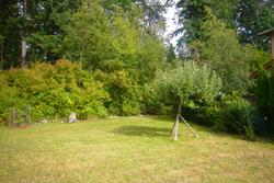 2362 Erie Terrace yard