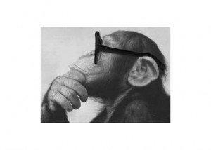 "Appraisal Ape says,""Results are relative. I'm just doing my job!"""