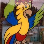bham diegos parrot