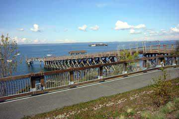 Taylor Dock