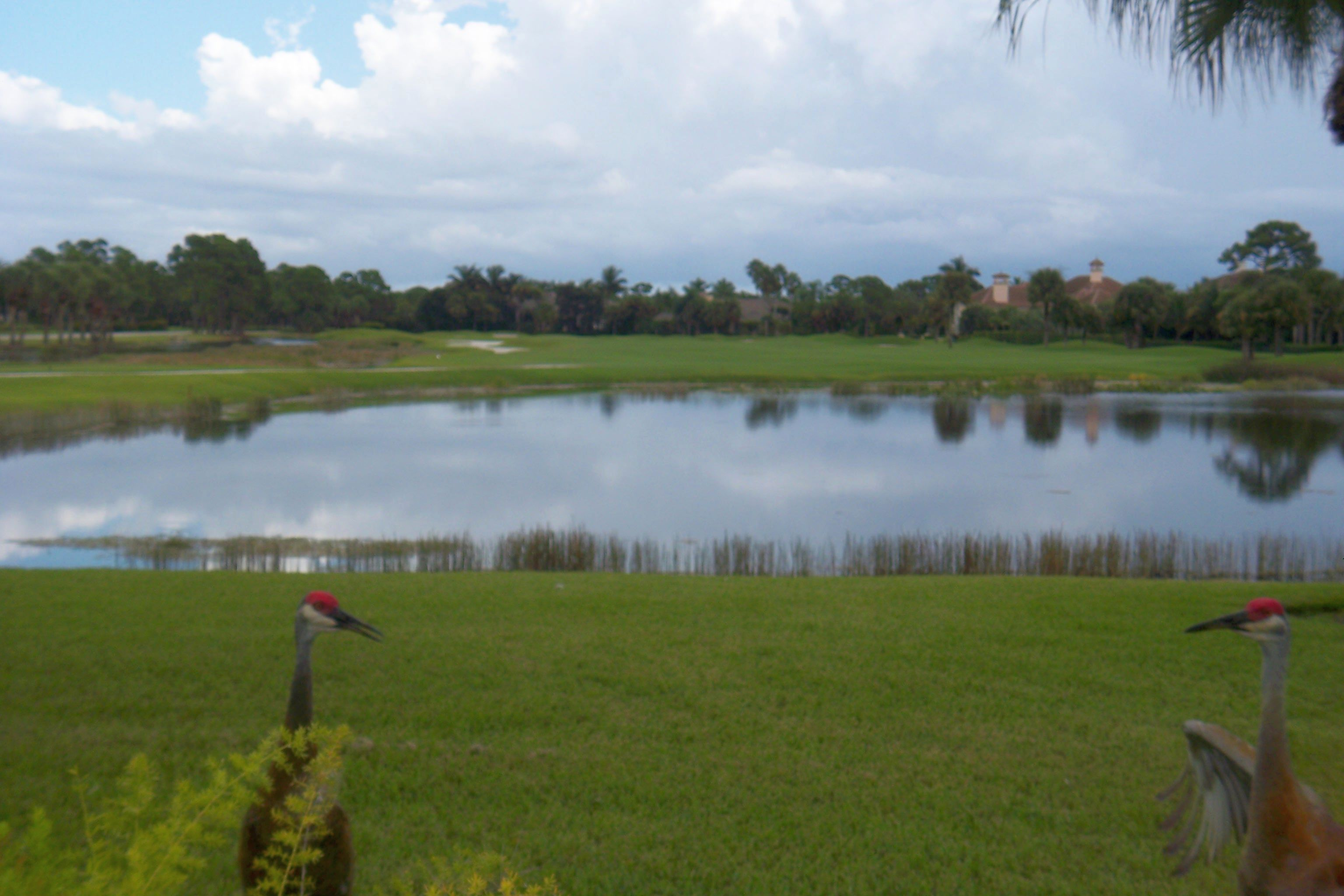Golf courses, lakes and lots of green space make Palm Beach Gardens real estate desireable