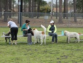 North Biloxi - Dog Park