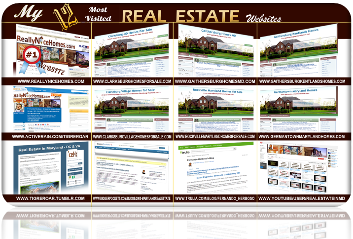 my real estate webistes