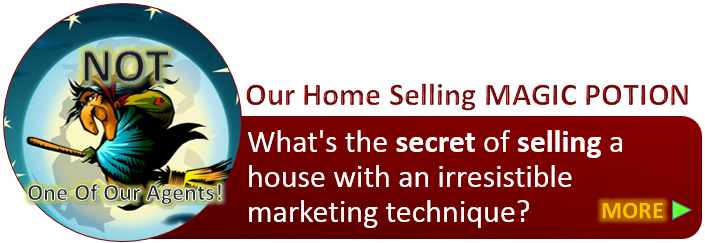 Home selling techniques