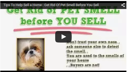 Pets when selling a home