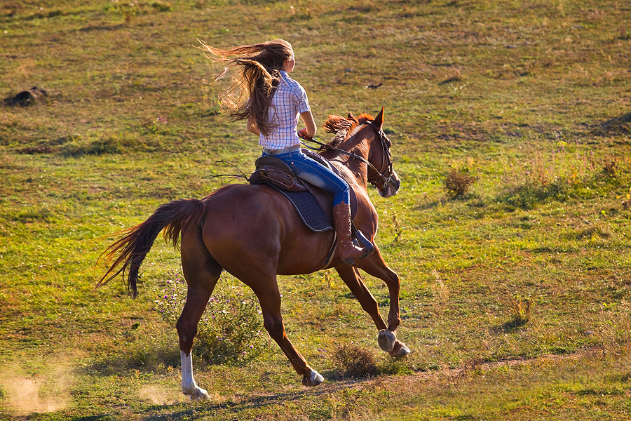 Choose Sedona horse property near a national park.