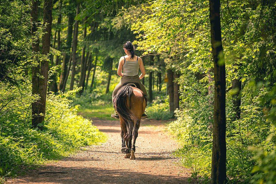 Find great rides near Sedona horse property.