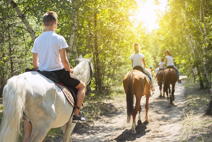 Go horseback riding near your Verde Valley home.