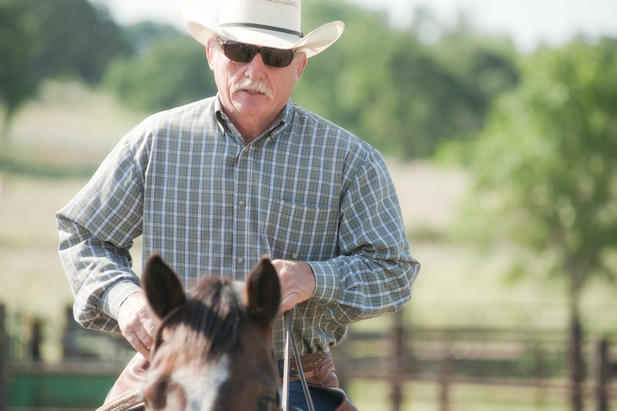 Search Verde Valley horse properties.