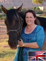 Sedona horse property