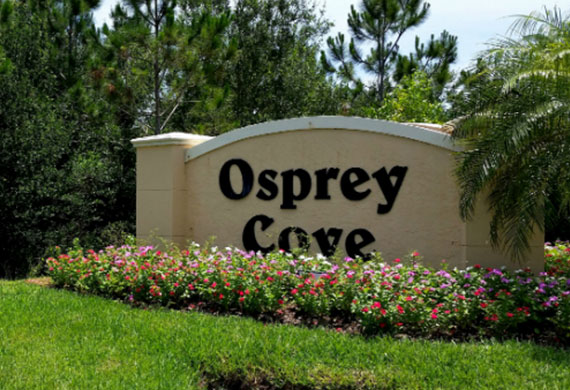 Osprey Cove, Estero Real Estate