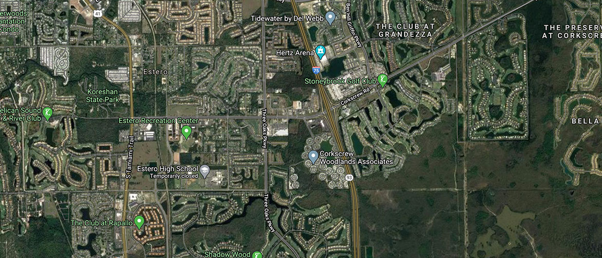 Estero River Real Estate