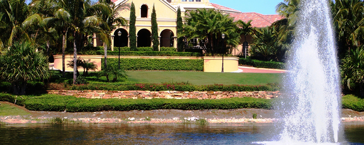 Homes for sale at the Colony in Pelican Landing, Estero
